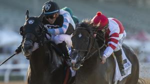 Omaha Beach (right) made a victorious return to the races last Saturday ahead of the Breeders' Cup.